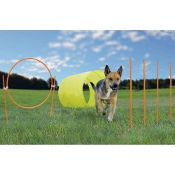 Kyjen Outward Hound Agility Starter Kit Outdoor